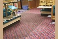 Carpet And Furniture Cleaning