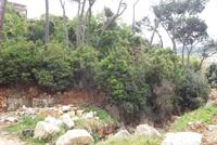 Land For Sale In Beit Chabeb